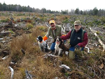 Hunters with dogs on habitat project.