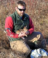 Researcher holding captured cottontail