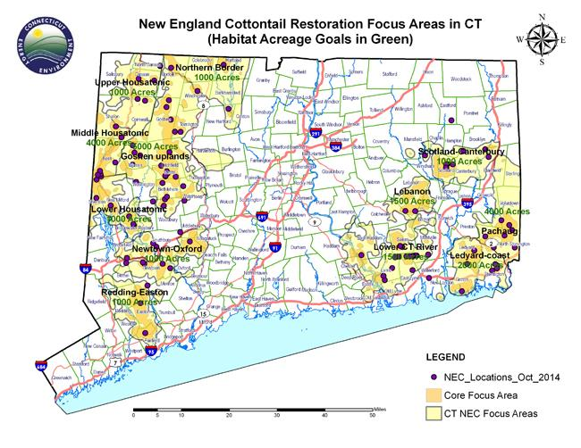 New England Cottontail Focus Areas in Connecticut