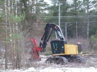 Mechanized logging equipment creating future New England cottontail habitat
