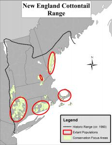New England cottontail distribution map
