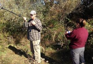 Biologist using radio-telemetry to locate cottontail