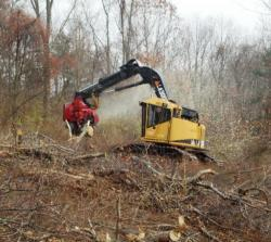 Logging machine at work on White Memorial Foundation